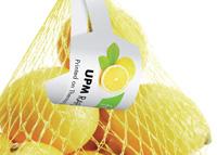 бирка (ярлык) Fruit Tag 240